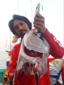 karena ulah predator lain yang membuat tuna tersebut kehilangan ekornya