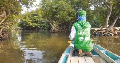 Apa Kiat- Kiat Mancing di Perairan Hutan