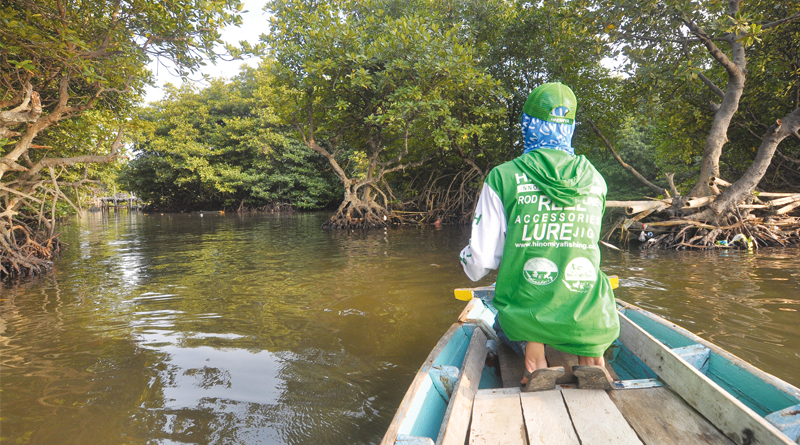 Apa kiat- kiat mancing di perairan hutan bakau?