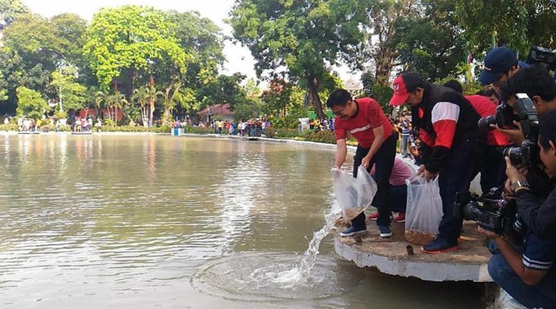 50 Ribu Benih Ikan Dari Gubernur DKI Untuk Warga Jakarta