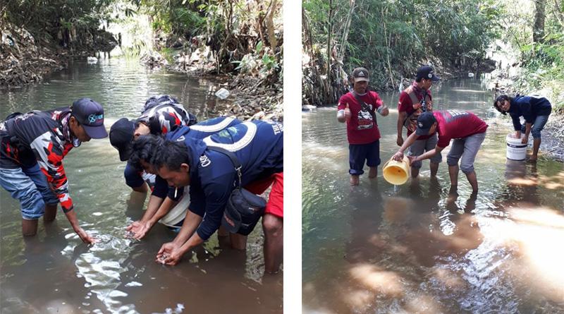Lestarikan Ikan Lokal; WWI Semarang Restocking Ikan Melem dan Tawes