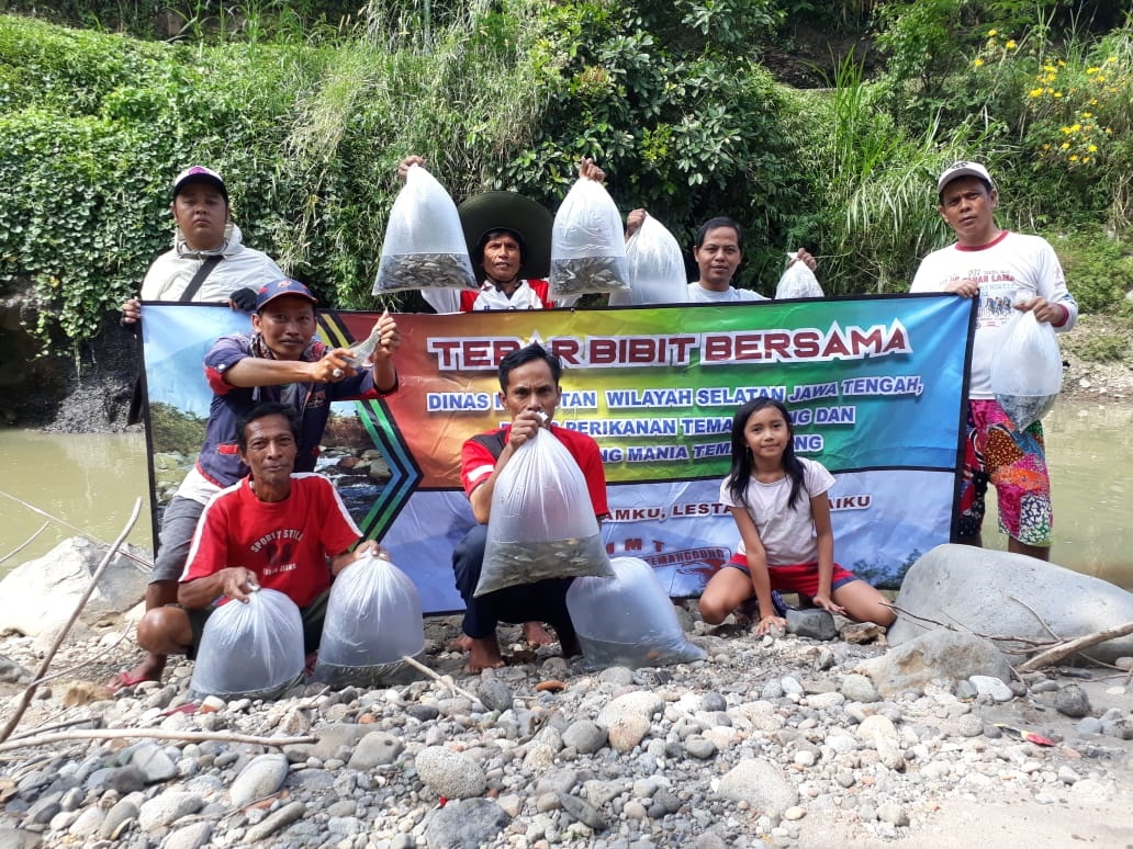 Melawan Illegal Fishing di Temanggung dengan Tebar Benih