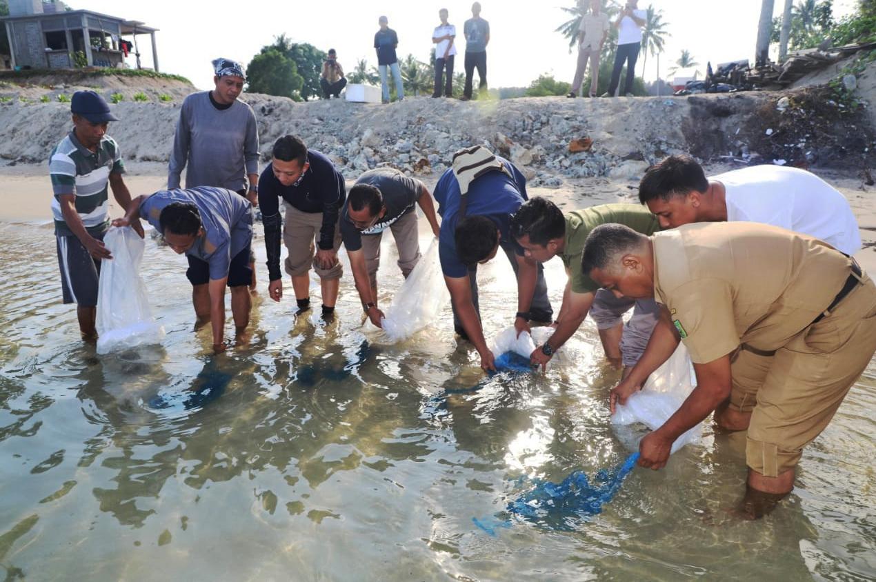 KKP Ajak Pembudidaya Lakukan Restocking Ikan